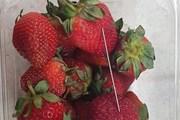 Bắt nghi phạm gây ra vụ khủng hoảng 'kim khâu trong trái dâu tươi'
