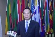 Việt Nam trình bày báo cáo quốc gia về thực thi Công ước chống tra tấn