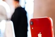 [Video] Công ty Trung Quốc kêu gọi nhân viên tẩy chay Apple