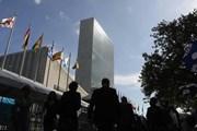 Báo động nạn quấy rối tình dục tại các cơ quan Liên hợp quốc