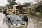 Mỹ: Các bang miền Nam trải qua đợt lũ lịch sử do bão Sally