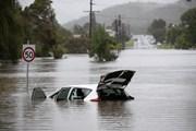 Hình ảnh bang New South Wales trải qua đợt lũ lụt lịch sử