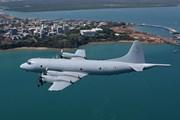 Báo Trung Quốc cảnh cáo bắn hạ máy bay Australia trên Biển Đông