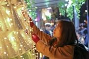 Cùng Đại sứ Pháp tại Việt Nam thắp lên 'Cây thông lời hứa' đặc biệt