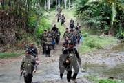 Quân đội Philippines tìm nhóm con tin bị Abu Sayyaf bắt giữ