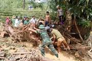 Khắc phục sự cố lưới điện tại các tỉnh miền Bắc sau bão số 3