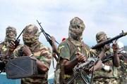 Nhóm thánh chiến Boko Haram chiếm giữ thị trấn ở Đông Bắc Nigeria