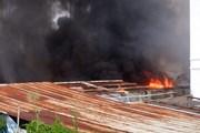 Cháy lớn thiêu rụi xưởng sản xuất thảm và cây lau nhà ở TP.HCM
