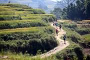 Hơn 3.100 vận động viên tham gia giải marathon vượt núi quốc tế