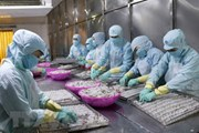 """Xuất khẩu hải sản sang EU bị tác động mạnh bởi """"thẻ vàng"""" IUU"""