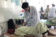 Bình Định: Ăn nhầm nấm độc, ba bà cháu nhập viện cấp cứu