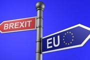 Chặng đường gập ghềnh và gian nan tiến tới Brexit: Vì đâu nên nỗi?