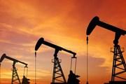 Giá dầu thế giới giảm mạnh do dự trữ của Mỹ tiếp tục tăng