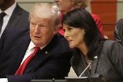 Chính sách đối ngoại Mỹ đi theo hướng nào khi không có bà Nikki Haley?