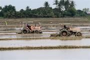 Chuẩn bị phương án lấy nước phục vụ gieo cấy lúa vụ Đông Xuân
