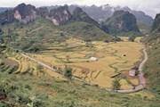 Sắp đón nhận danh hiệu Công viên địa chất toàn cầu non nước Cao Bằng