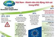 [Infographics] Việt Nam - thành viên chủ động, tích cực trong APEC