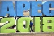 Việt Nam đồng hành cùng APEC hướng tới thập niên phát triển mới