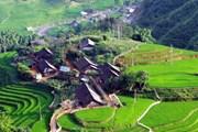 Lào Cai yêu cầu xử nghiêm các sai phạm xây dựng tại Sa Pa