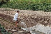 Phòng chống hạn hán, xâm nhập mặn trong mùa khô 2018-2019