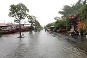 Quảng Nam: Tối 9/12, mực nước sông Tam Kỳ lên nhanh ở mức báo động