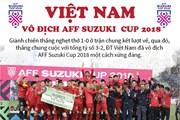 [Infographics] Đội tuyển Việt Nam vô địch AFF Suzuki Cup 2018