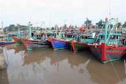 Ảnh hưởng của bão số 1, tỉnh Ninh Thuận có mưa rất to và dông