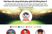 [Infographics] Việt Nam sẵn sàng chinh phục giải U22 Đông Nam Á