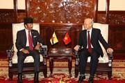 Lễ đón chính thức Quốc vương Brunei thăm cấp Nhà nước tới Việt Nam