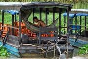 Cuộc sống khó khăn của bà con gốc Việt tại tỉnh Kampong Chhnang