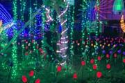 [Photo] Lễ hội ánh sáng chào mừng Hải Dương trở thành đô thị loại 1