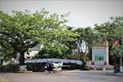 Dịch Diệp Trang - ngôi làng cổ thuần Việt hơn 1.000 năm tuổi