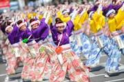 Ngày hội văn hóa Nhật Bản sẽ được mở cửa tự do cho du khách