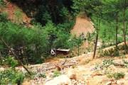 Hà Giang: Xe tải ben lao xuống vực sâu làm 4 người thiệt mạng