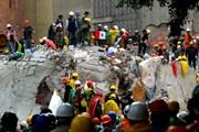 Ngành bảo hiểm xúc tiến đền bù thiệt hại do động đất tại Mexico