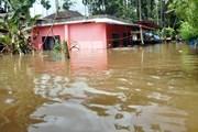 Các trận mưa bão tại Nam Á cướp đi sinh mạng của hơn 1.200 người