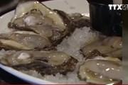 [Video] Tử vong do ăn hàu sống nhiễm vi khuẩn ăn thịt người