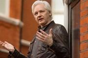 Nhà sáng lập WikiLeaks Julian Assange nêu điều kiện ra đầu thú