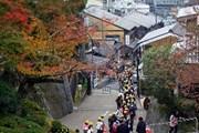 [Photo] Phố cổ Kyoto - điểm đến hấp dẫn của du khách