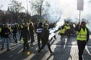 Pháp cảnh báo Tổng thống Mỹ không nên can thiệp chính trị