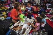 Số người đến Mỹ xin tị nạn tăng gấp đôi so với một năm trước