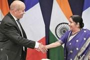 Ấn Độ-Pháp đánh giá kỹ lưỡng các khía cạnh của quan hệ song phương