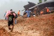 Mưa lớn gây sạt lở đất tại Indonesia khiến hơn 30 người thiệt mạng