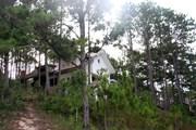 [Photo] Hàng chục căn biệt thự tiền tỷ bị bỏ hoang ở hồ Tuyền Lâm