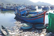 [Photo] Tình trạng rác thải tràn lan ở các bãi biển Ninh Thuận