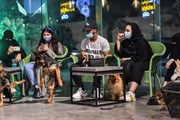 [Photo] Quán càphê đầu tiên dành cho chó tại Saudi Arabia