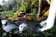 [Photo] Ngỡ ngàng trước vẻ đẹp hoang sơ của thác Đambri