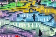 """[Photo] """"Nhuộm màu"""" cho các tác phẩm điêu khắc băng tuyết ở Trung Quốc"""