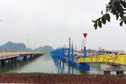 Quảng Ninh tạm dừng các hoạt động vận tải khách đường thủy