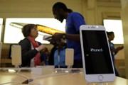 iPhone 6 Plus có thể khiến iPhone 6 khan hàng trong năm tới